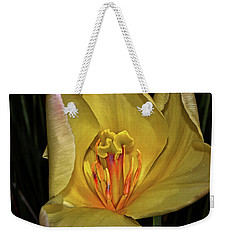 Centerpiece - Grand Opening Yellow Tulip 001 Weekender Tote Bag
