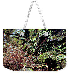 Weekender Tote Bag featuring the photograph Central Park Rock Formation by Sandy Moulder