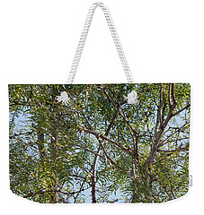 Weekender Tote Bag featuring the photograph Central Texas Sky View Through Mesquite Trees by Ray Shrewsberry