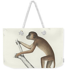 Central Yellow Baboon, Papio C. Cynocephalus Weekender Tote Bag by J D L Franz Wagner