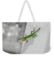 Chameleon Weekender Tote Bag by Robert Meanor