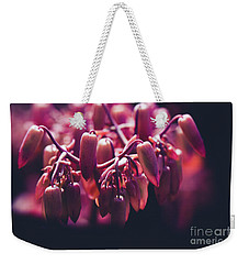 Weekender Tote Bag featuring the photograph Chandelier Plant Kalanchoe - A Solitary Morning by Sharon Mau