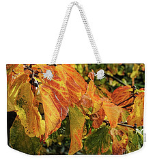 Weekender Tote Bag featuring the photograph Changes by Peggy Hughes