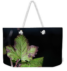 Weekender Tote Bag featuring the photograph  Changing Color  by Jingjits Photography