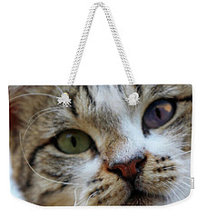 Weekender Tote Bag featuring the photograph Changing Colors by Munir Alawi