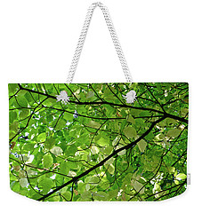 Changing Colors Yosemite Valley Weekender Tote Bag