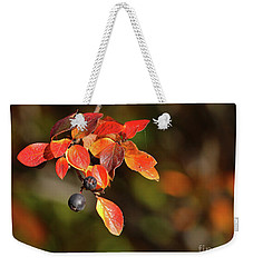 Weekender Tote Bag featuring the photograph Changing Season by Ann E Robson