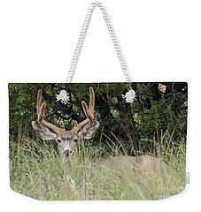 Chasing Velvet Antlers 2 Weekender Tote Bag