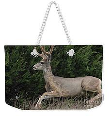 Chasing Velvet Antlers 5 Weekender Tote Bag