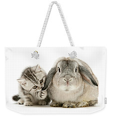Checking For Grey Hares Weekender Tote Bag