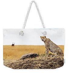 Cheetah In Africa Looking Into Camera Weekender Tote Bag