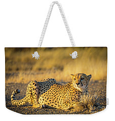 Cheetah Portrait Weekender Tote Bag by Inge Johnsson