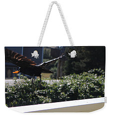 Weekender Tote Bag featuring the photograph Cheeto Bandido by Marie Neder