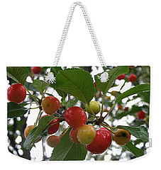 Weekender Tote Bag featuring the photograph Cherries In The Morning Rain by Angie Rea
