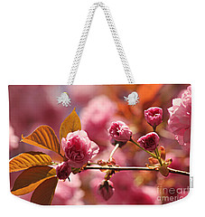 Cherry Blossoms Weekender Tote Bag by Judy Palkimas