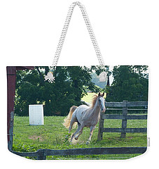 Chester On The Run Weekender Tote Bag by Donald C Morgan