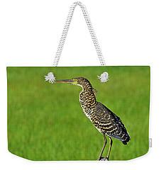 Chevron Weekender Tote Bag by Tony Beck