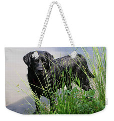 Weekender Tote Bag featuring the photograph Chicago 0121 by Guy Whiteley