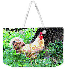 Weekender Tote Bag featuring the mixed media Chicken Inthe Woods by Charles Shoup