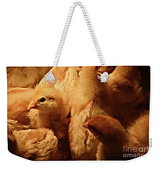 Weekender Tote Bag featuring the photograph Chicks by Mary Machare