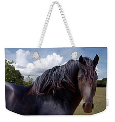 Chief - Windy Portrait Series 3 - Digitalart Weekender Tote Bag