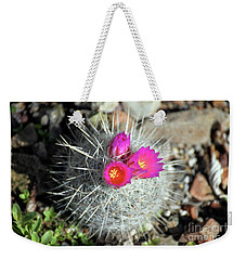 Chihuahua Snowball 1 Weekender Tote Bag