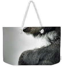Chimpanzee Profile Vignetee Effect Weekender Tote Bag by Jim Fitzpatrick
