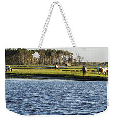 Weekender Tote Bag featuring the photograph Chincoteague Ponies On Assateague Island by Belinda Greb