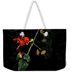 Chinese Hat Plant Weekender Tote Bag
