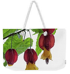 Chinese Lantern 4 Weekender Tote Bag by Shirley Mitchell