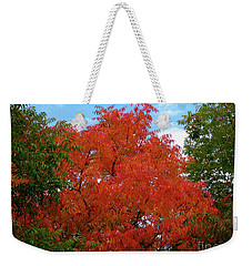 Chinese Pistache Fall Color Weekender Tote Bag