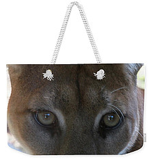 Weekender Tote Bag featuring the photograph Chinook by Laddie Halupa