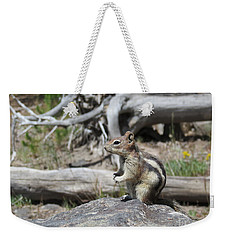 Chipmunk At Yellowstone Weekender Tote Bag by Ausra Huntington nee Paulauskaite