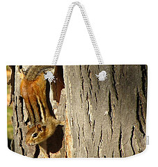Weekender Tote Bag featuring the photograph Chipmunk In Fall by Rick Morgan