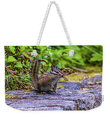 Weekender Tote Bag featuring the photograph Chipmunk by Jonny D