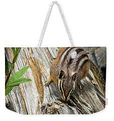 Chipmunk On A Log Weekender Tote Bag