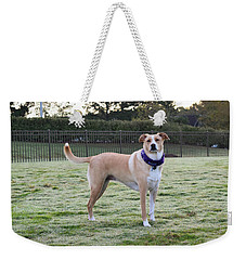 Chloe At The Dog Park Weekender Tote Bag
