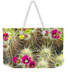 Cholla Cactus Blooms Weekender Tote Bag