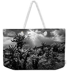 Weekender Tote Bag featuring the photograph Cholla Cactus Garden Bathed In Sunlight In Black And White by Randall Nyhof