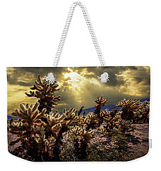 Weekender Tote Bag featuring the photograph Cholla Cactus Garden Bathed In Sunlight In Joshua Tree National Park by Randall Nyhof