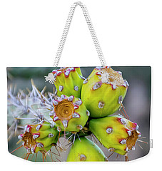 Weekender Tote Bag featuring the photograph Cholla Fruit S48 by Mark Myhaver