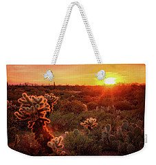 Weekender Tote Bag featuring the photograph Cholla Sunset In The Sonoran  by Saija Lehtonen