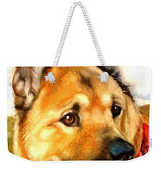 Weekender Tote Bag featuring the painting Chow Shepherd Mix by Marilyn Jacobson