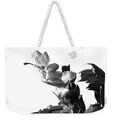 Weekender Tote Bag featuring the photograph Christmas Cactus by Ed Cilley