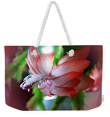 Weekender Tote Bag featuring the photograph Christmas Cactus by EricaMaxine  Price