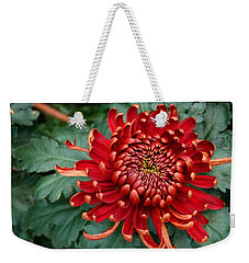 Christmas Chrysanthemum Weekender Tote Bag