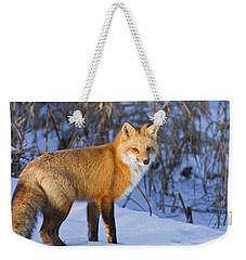 Christmas Fox Weekender Tote Bag