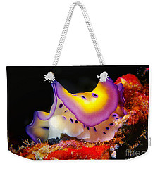 Chromodoris Kunei Nudibranch  Weekender Tote Bag by Sergey Lukashin