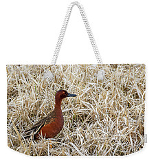 Weekender Tote Bag featuring the photograph Cinnamon Teal by Michael Chatt