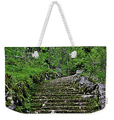 Weekender Tote Bag featuring the photograph Clark Reservation  by Suzanne Stout
